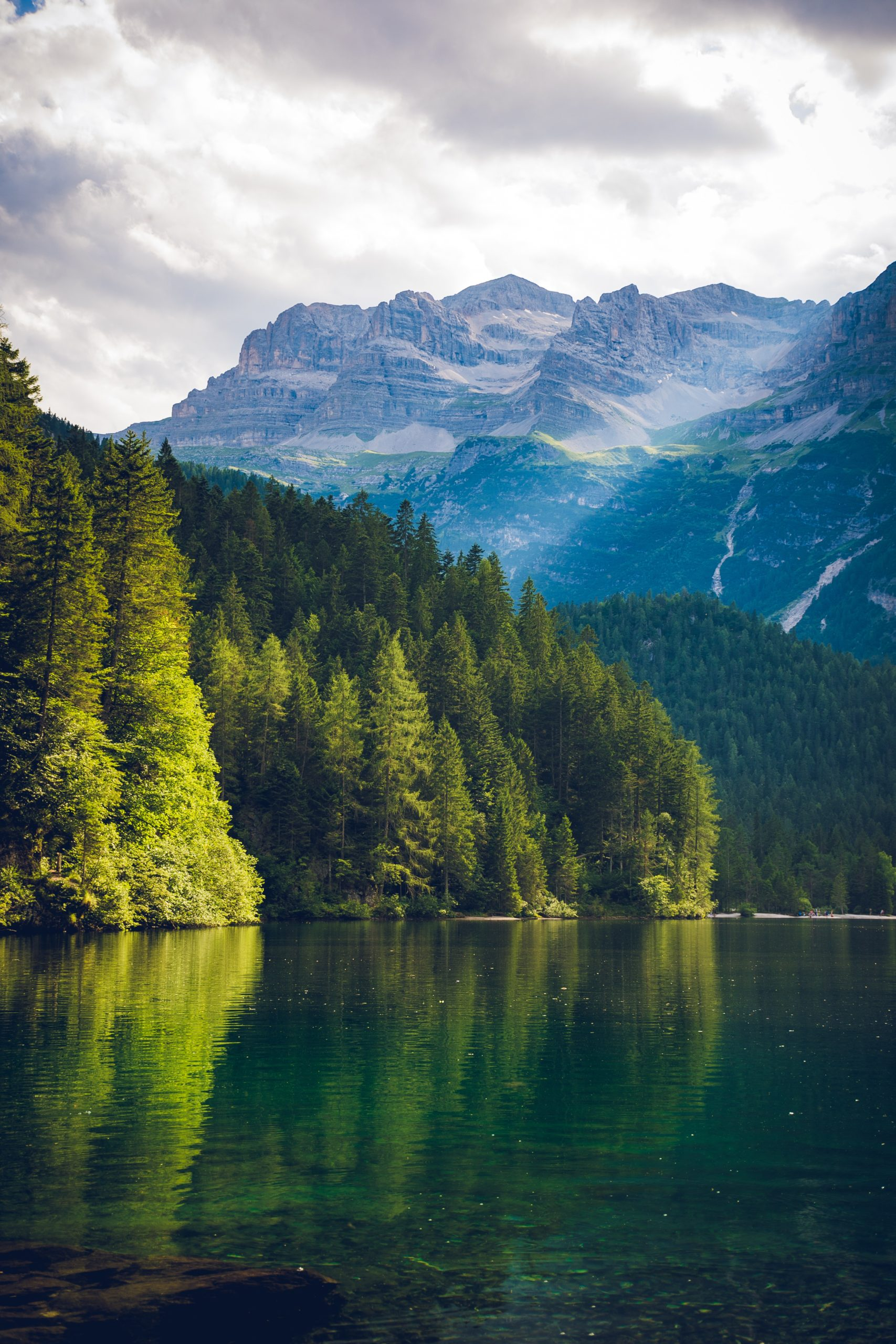 Kananaskis forêt et lac