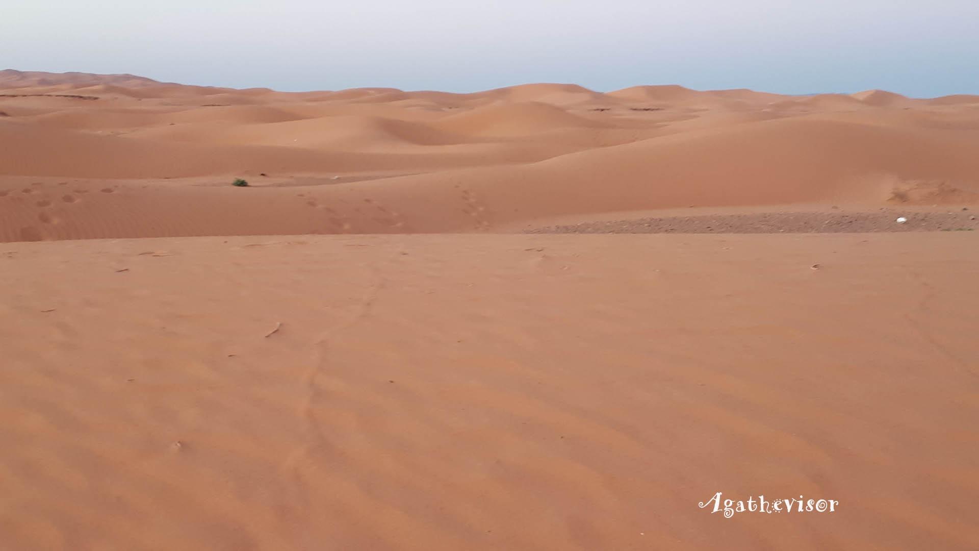 desert-maroc-expatriation