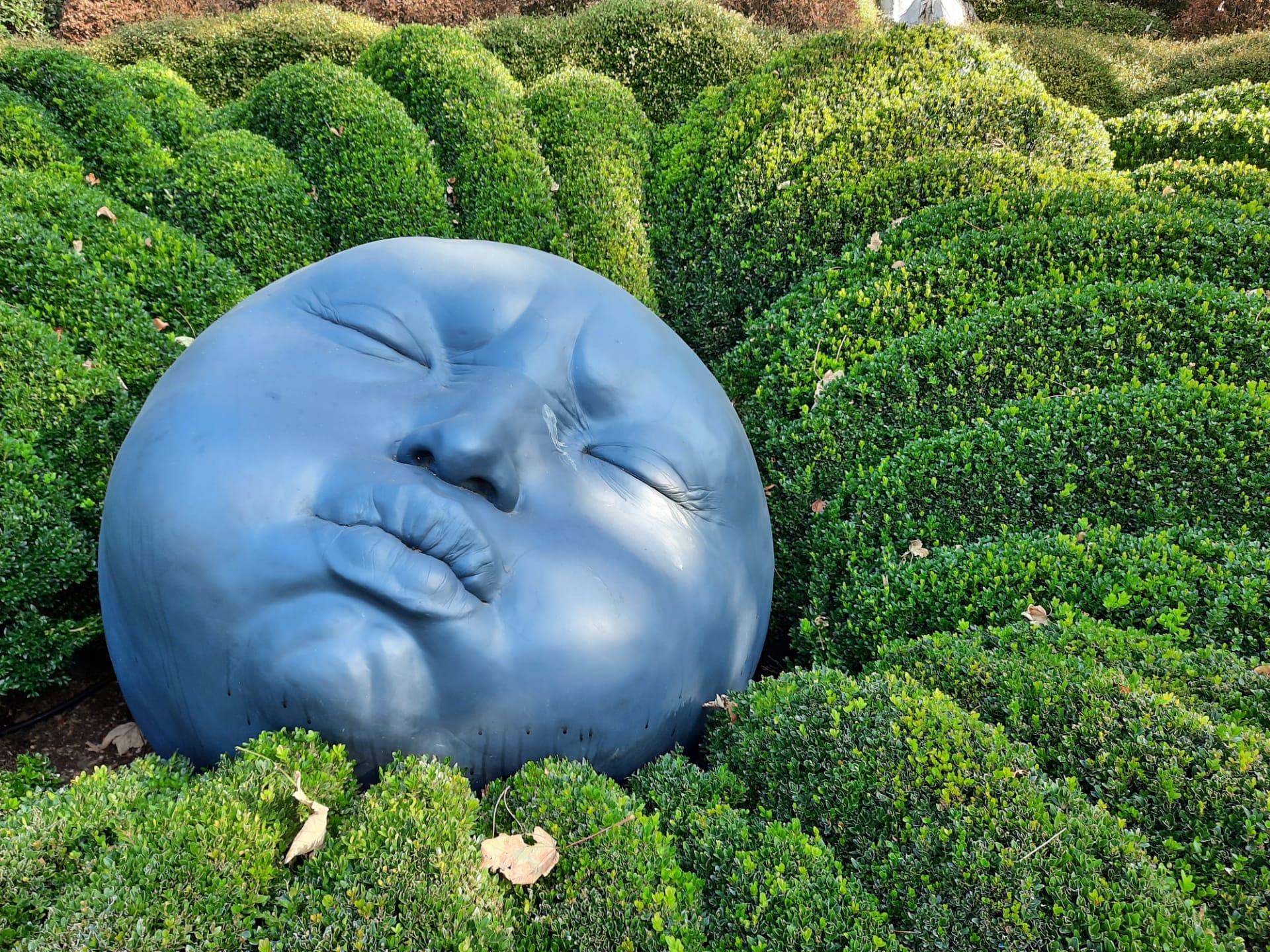 Etretat-jardin-des-emotions