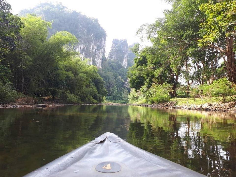 guide-jungle-thailande